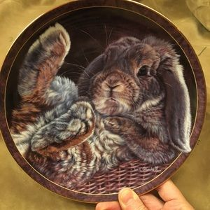 "Decorative Collectors Edition Plate. 8""."